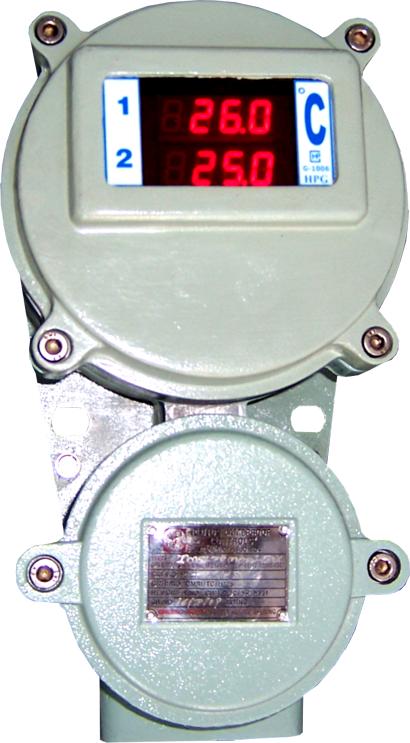 Digital Temperature Indicator FLP/WP